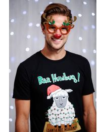 Kerst accessoires, Een grappige bril